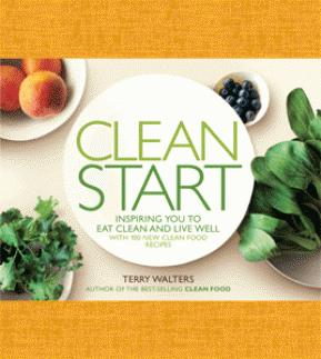 Cover of book Clean Start by Terry Walters